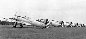 24th Fighter Squadron - Eight Curtiss P-36A Hawks at Rio Hato Airfield, Panama, 1939. Identified aircraft are 38-0013, 38-0069 and 38-0015