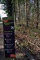 25.3.16 Delamere Forest 06 (26008206326).jpg