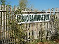 43Lubao Bamboo Hub & Eco-Park Santa Catalina Pampanga 41.jpg