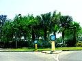 A@a University of Cyprus - panoramio (17).jpg
