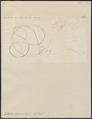 Aëtobatis narinari - 1700-1880 - Print - Iconographia Zoologica - Special Collections University of Amsterdam - UBA01 IZ14200127.tif