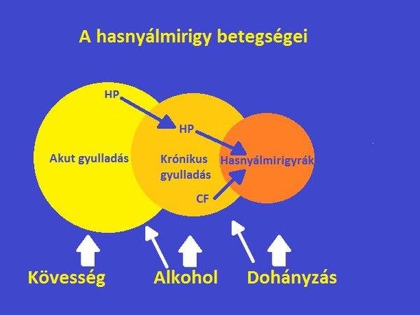 hasnyálmirigyrák uk)