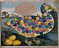 A large goose, with three golden eggs; numbered circles Wellcome V0040571.jpg