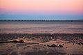 A ponte no horizonte (1439296635).jpg