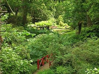 Abbotsbury Subtropical Gardens - Abbotsbury Subtropical Gardens