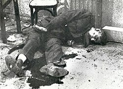 Abd al-Karim death.jpg