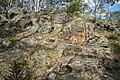 Aboriginal People Memorial Canberra-1 (28032406769).jpg
