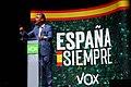 Acto de Vox en Vigo con Santiago Abascal (48954473786).jpg
