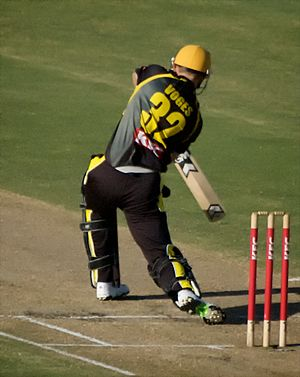 Adam Voges -  Voges batting for WA against Victoria in the 2009-10 KFC Twenty20 Big Bash.