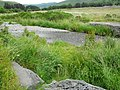 Afon Castell - geograph.org.uk - 1389674.jpg