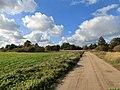 Again Road - panoramio.jpg