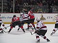 Albany Devils vs. Portland Pirates - December 28, 2013 (11622283193).jpg