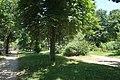 Allée bois de Boulogne 4.jpg