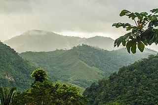 Atlantic Forest Biosphere Reserve