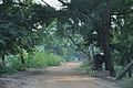 Amar Kutir Road - Sonajhuri - Birbhum 2014-06-28 5292.JPG