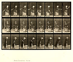 Animal locomotion. Plate 297 (Boston Public Library).jpg