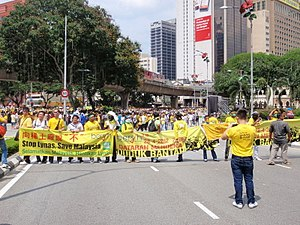 Anti-Lynas and Bersih 3.0 banners.jpg