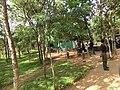 Anuradhapura, Sri Lanka - panoramio (1).jpg