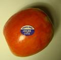 Apple plu 4130 2.png
