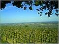 April Patina Vosges Die Vogesen France - Master Alsace magic Elsaß Photography 2014 - panoramio (8).jpg