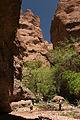 Aravaipa Canyon Wilderness (9415124064).jpg
