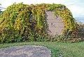 Ardis Furnace Iron Mountain MI C.jpg