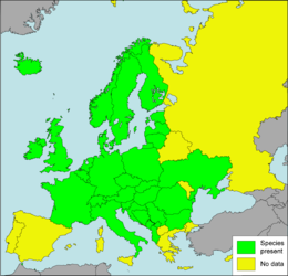 Arianta arbustorum Presence in European countries.png