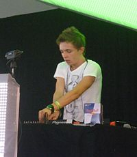 Arty at Electric Zoo Festival 2011.jpg