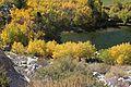 Aspen pond Aspendell.jpg