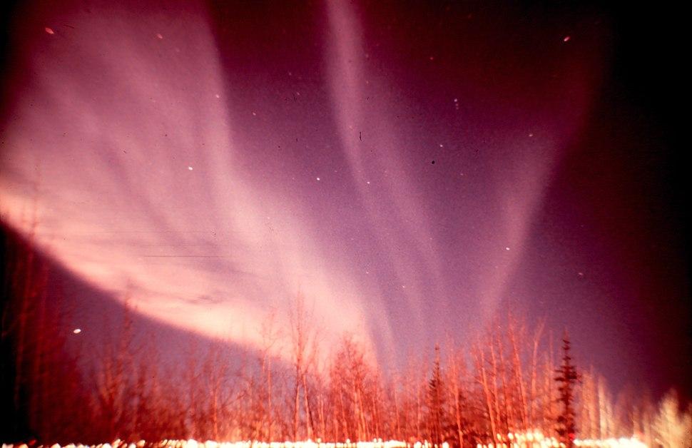 Auroraborealissm