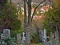 Ausblick Friedhof Gersthof.jpg