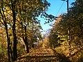 Autumn Scenery near Lilleaker, Oslo - panoramio.jpg