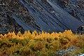 Autumn at Khunjerab Pass.jpg
