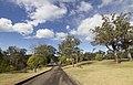 Avon NSW 2574, Australia - panoramio (18).jpg