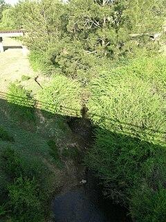 Avon River (Mid-Coast Council)