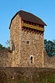 B-Wattwil-Burgruine-Iberg.jpg