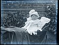 Baby in pram, early 1900s (5229537756).jpg