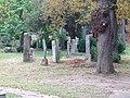 Baden jüdischer Friedhof 2.jpg