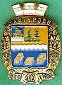 Badge Мантурово.jpg
