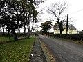 Ballyrobin Road - geograph.org.uk - 1557050.jpg
