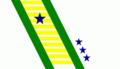 Bandeira de vicentina.png