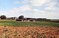 Barley crop. Atlantic coastal plain village, Morocco (23903313218).jpg