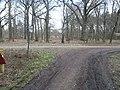 Barnbruch 04.04.2010 - panoramio - Christian-1983 (13).jpg