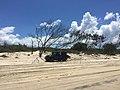 Beach at Noosa North Shore, Queensland 03.JPG