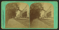 Beacon Street, Boston, from Robert N. Dennis collection of stereoscopic views.png