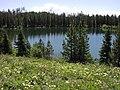 Bearpaw Lake Grand Teton National Park.jpg