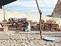Bedouin children outside a tent in the Egyptian desert.jpg