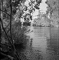 Begroeide oevers van de rivier de Jordaan met een stuw bij de uitmonding van de , Bestanddeelnr 255-4135.jpg