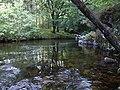 Bellpool, River Dart - geograph.org.uk - 841113.jpg