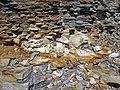 Bentonite (105.6 Ma) in the Dakota Sandstone (Lower Cretaceous) (Dinosaur Ridge, Colorado, USA) 4 (21586817144).jpg